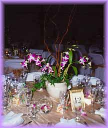 Flower Delivery Miami on Orchid Floral Arrangements  Delivery To Miami Dade   Broward County